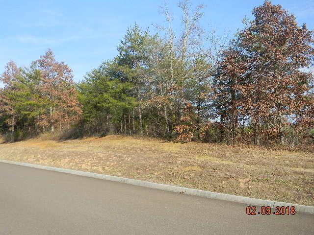 Lot 88 Red Wing Drive, Vonore, TN 37885 (#1062045) :: Realty Executives Associates