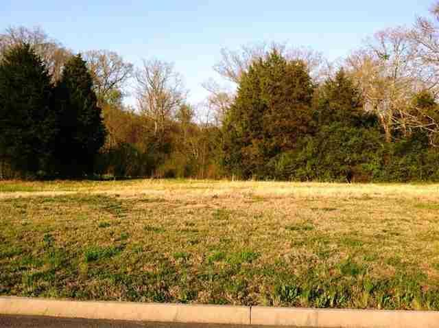 Lot 38 County Road 7030, Athens, TN 37303 (#1062049) :: Billy Houston Group