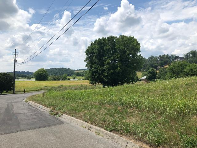 Lot 58 Business Center Circle, Sevierville, TN 37876 (#1062322) :: SMOKY's Real Estate LLC