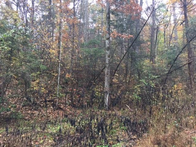 000 Green Forest Rd Rd, Cosby, TN 37722 (#1062458) :: SMOKY's Real Estate LLC