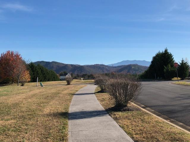 Lot 35 Oakley Manor Court, Sevierville, TN 37862 (#1063000) :: Billy Houston Group