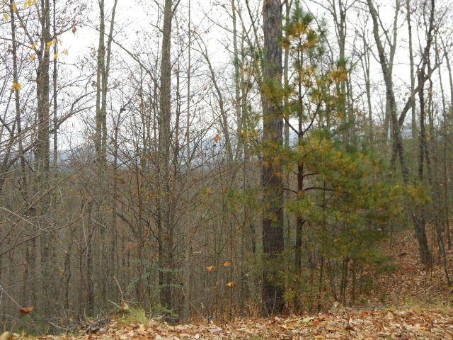 Stackstone Rd, Sevierville, TN 37862 (#1063354) :: The Terrell Team