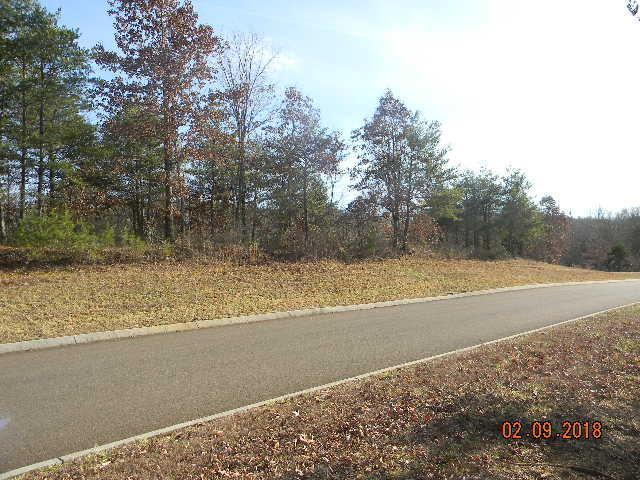 Lot 88 Red Wing Drive, Vonore, TN 37885 (#1063562) :: Catrina Foster Group
