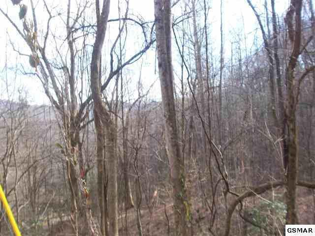 Lot 17c Laurel Way, Gatlinburg, TN 37738 (#1063840) :: CENTURY 21 Legacy