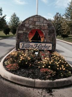 Cherokee Drive, Vonore, TN 37885 (#1064171) :: Billy Houston Group