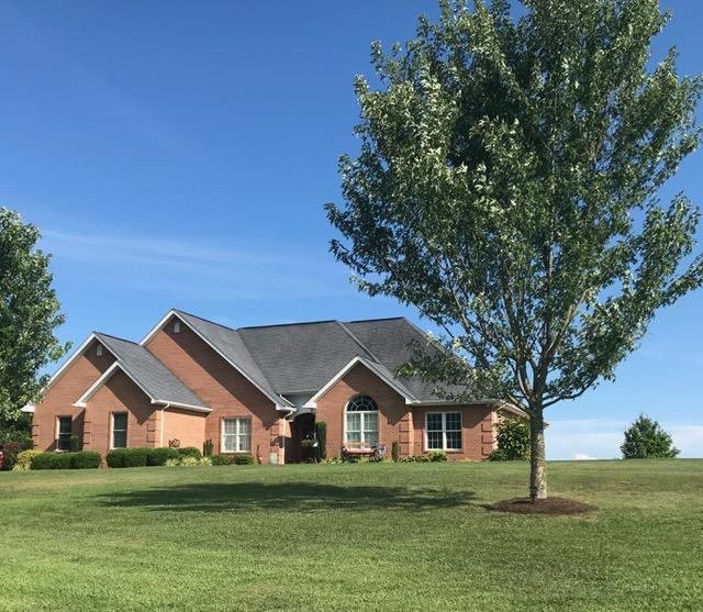 162 Canary Lane, Speedwell, TN 37870 (#1064703) :: Shannon Foster Boline Group