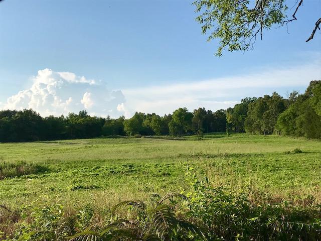 Gun Ridge Lot #5, Vonore, TN 37885 (#1065121) :: Billy Houston Group