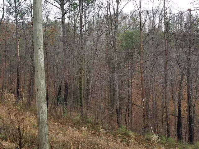 Lot 8 Timber Ridge Way, Sevierville, TN 37876 (#1065391) :: Billy Houston Group