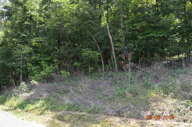 Laurel Lake Circle, Madisonville, TN 37354 (#1065570) :: Billy Houston Group