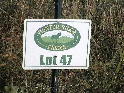 Lot 47 Hidden Meadow Lane, Sweetwater, TN 37874 (#1065754) :: Billy Houston Group