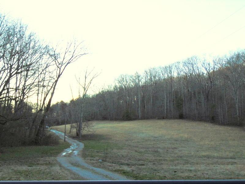 299 Raby Hollow Rd - Photo 1