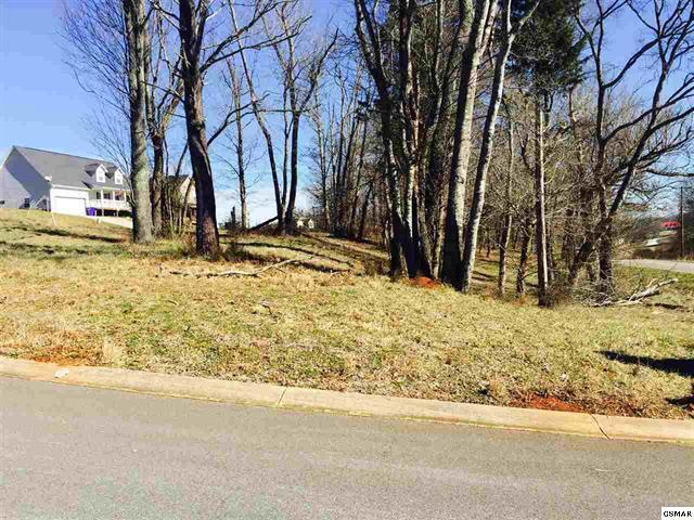 Lot #23 Lori Ellen Court, Sevierville, TN 37876 (#1066747) :: Billy Houston Group