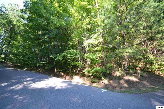 Lot 38 Riversong Way, Gatlinburg, TN 37738 (#1067153) :: Venture Real Estate Services, Inc.