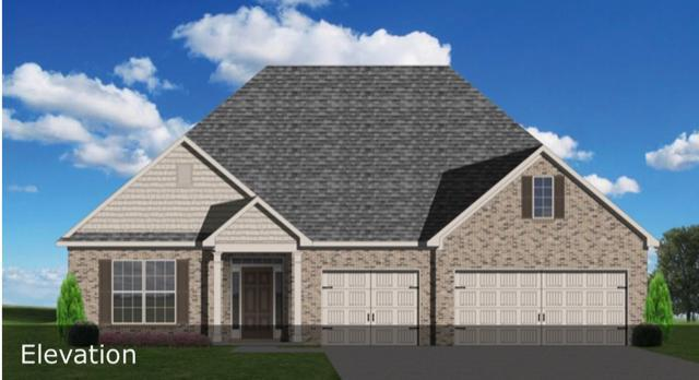 642 Branchwood Lane, Maryville, TN 37801 (#1067407) :: Billy Houston Group