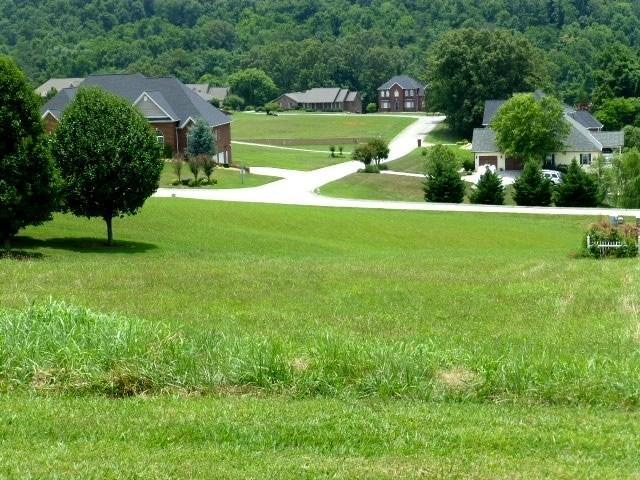 Lot 124R - 506 Providence Dr. Drive, Jefferson City, TN 37760 (#1067577) :: Billy Houston Group