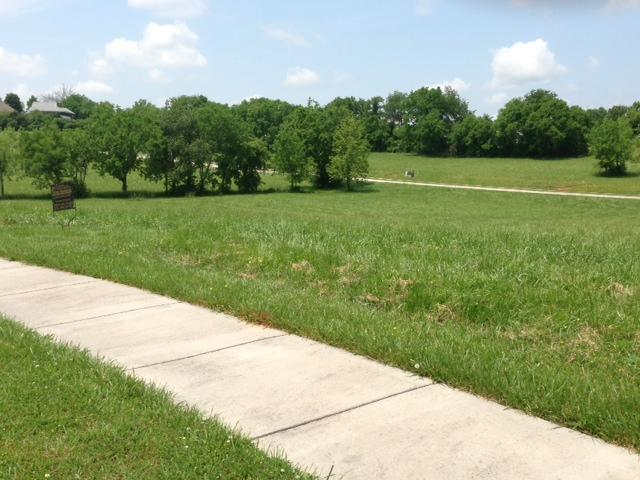 Lot 77 Cascading Falls Lane, Sevierville, TN 37876 (#1068440) :: Shannon Foster Boline Group