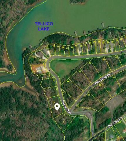 Falcon Tr, Vonore, TN 37885 (#1069336) :: CENTURY 21 Legacy