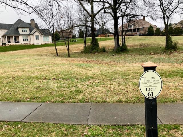 Lot #61 Lone Willow Drive, Knoxville, TN 37934 (#1069442) :: Shannon Foster Boline Group