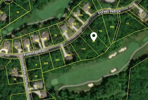 Forest Hill Drive, Crossville, TN 38558 (#1069680) :: Billy Houston Group