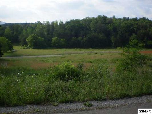 English Fields Drive Drive, Newport, TN 37821 (#1070663) :: Shannon Foster Boline Group