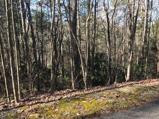 Stonegate Way, Townsend, TN 37882 (#1072363) :: Venture Real Estate Services, Inc.