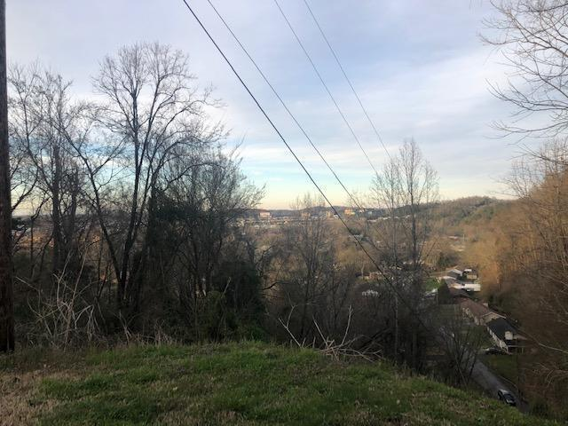 Lot 25 Scenic Loop Rd, Pigeon Forge, TN 37863 (#1072704) :: Billy Houston Group