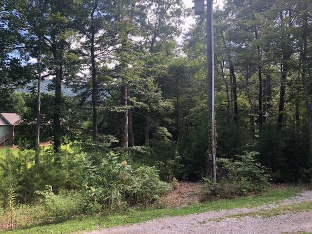 Lot 20 Roy Lee Way, Seymour, TN 37865 (#1072867) :: Shannon Foster Boline Group