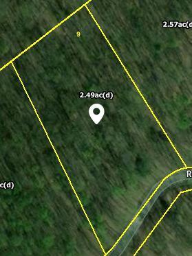 Running Deer Tr, Caryville, TN 37714 (#1073063) :: Venture Real Estate Services, Inc.