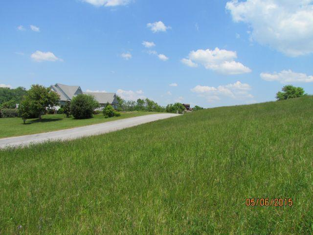 #95 Marble View Drive Drive, Kingston, TN 37763 (#1073708) :: Venture Real Estate Services, Inc.