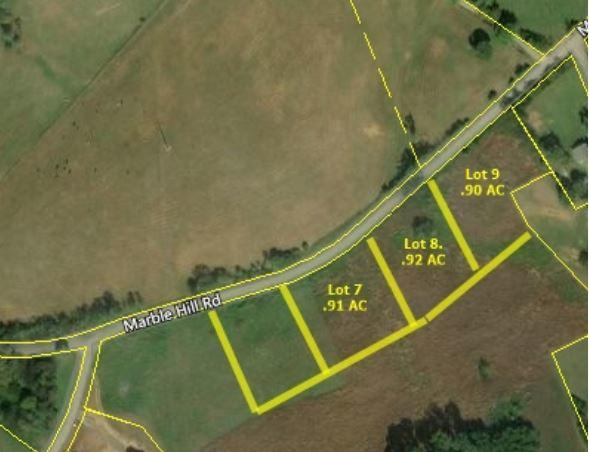Lot 7 Marble Hill Rd, Friendsville, TN 37737 (#1074075) :: Catrina Foster Group