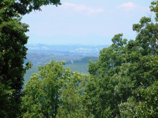 3745 Chilhowee Trail Tr, Maryville, TN 37803 (#1081233) :: Billy Houston Group