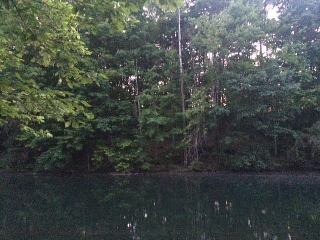 Lot 80 & 81 Whispering Winds, Jamestown, TN 38556 (#1081453) :: Realty Executives
