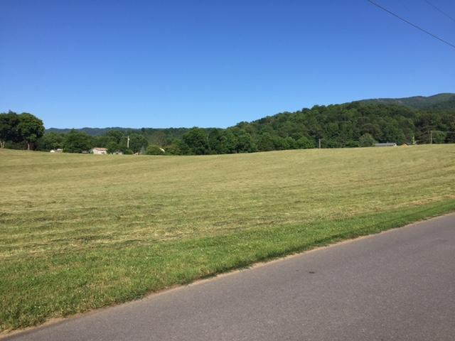8.3 Acres Hwy 73 - Photo 1