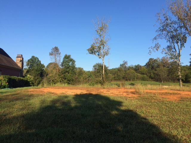 245 Ironwood Lane, Loudon, TN 37774 (#1082701) :: Realty Executives