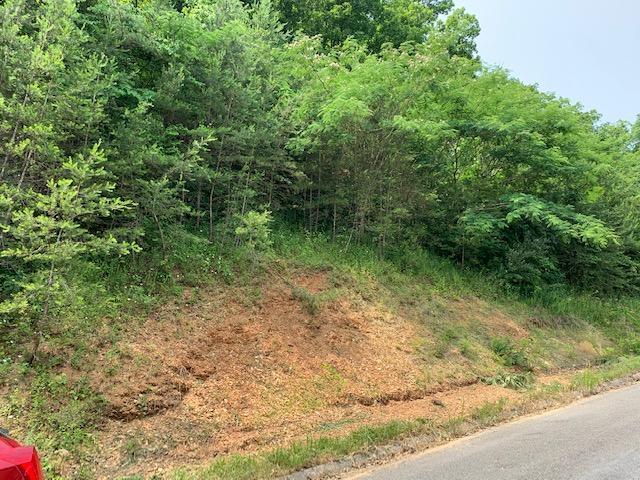 Pulaski Lane, Sevierville, TN 37862 (#1082934) :: Realty Executives