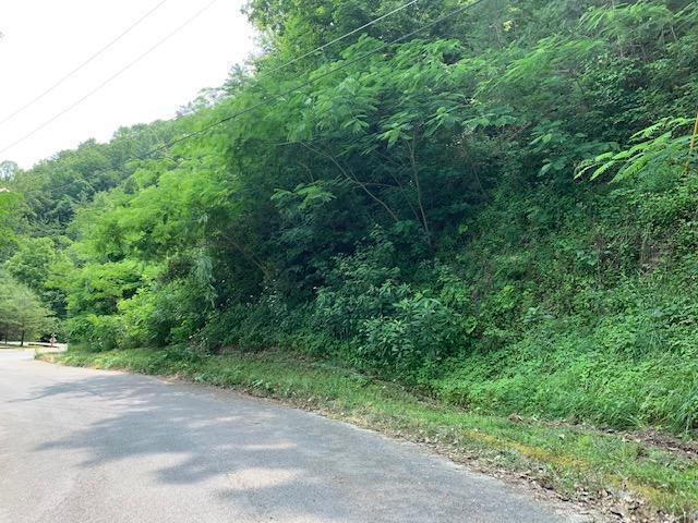 Pulaski Lane, Sevierville, TN 37862 (#1083078) :: Realty Executives