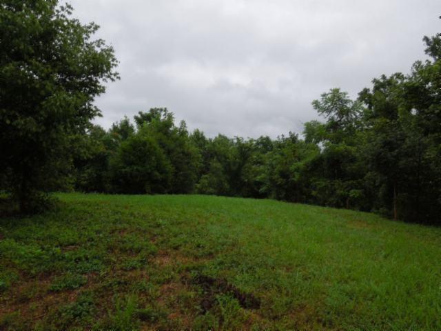55.83ac Maberry Lane, Cookeville, TN 38501 (#1083400) :: Venture Real Estate Services, Inc.