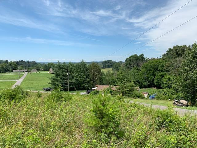 Atchley Rd, Sevierville, TN 37876 (#1085605) :: Realty Executives