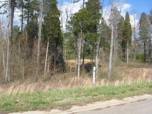113 Creek View Court, Oak Ridge, TN 37830 (#1088022) :: Venture Real Estate Services, Inc.