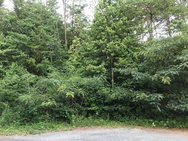 Daniel Drive, Seymour, TN 37865 (#1088442) :: SMOKY's Real Estate LLC
