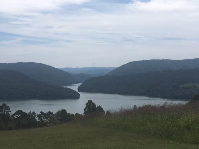 Lot 300 Marble Point Way, New Tazewell, TN 37825 (#1089174) :: Shannon Foster Boline Group