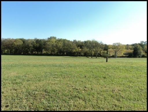Lot 44 Promontory Point, Louisville, TN 37777 (#1090825) :: The Cook Team
