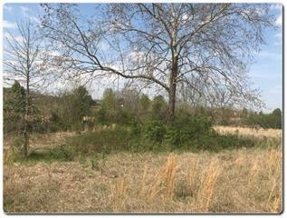 Lot 1 Old Newport Hwy, Sevierville, TN 37876 (#1091001) :: Billy Houston Group