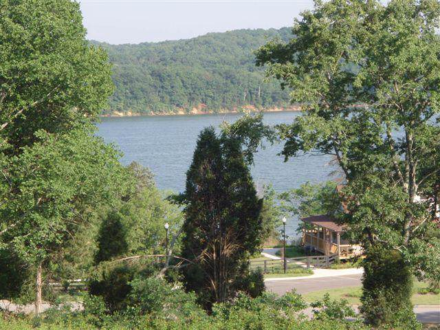 Docks Of The Bay Drive, Harriman, TN 37748 (#1095085) :: Shannon Foster Boline Group