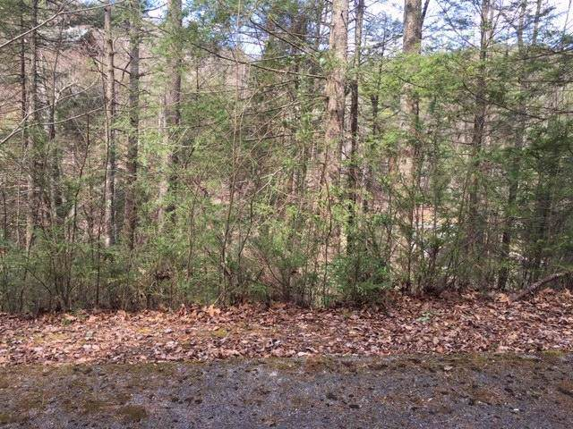 503 Stonegate Way, Townsend, TN 37882 (#1095649) :: Venture Real Estate Services, Inc.