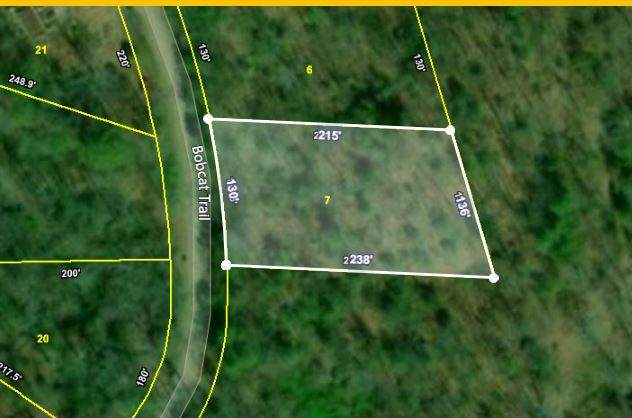 Lot 7 Bobcat Tr, Tallassee, TN 37878 (#1095843) :: Venture Real Estate Services, Inc.