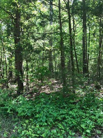 Lot 4 Sam Davis Rd, Decatur, TN 37322 (#1096159) :: The Creel Group | Keller Williams Realty