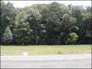 English Fields Drive - Photo 1