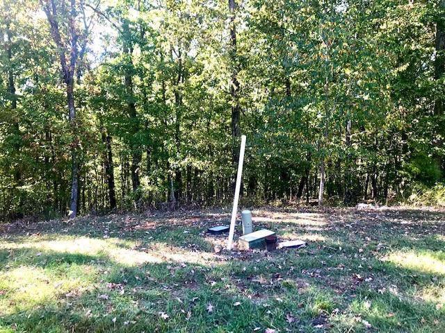 Rueben Ridge, Rockwood, TN 37854 (#1097972) :: The Creel Group   Keller Williams Realty