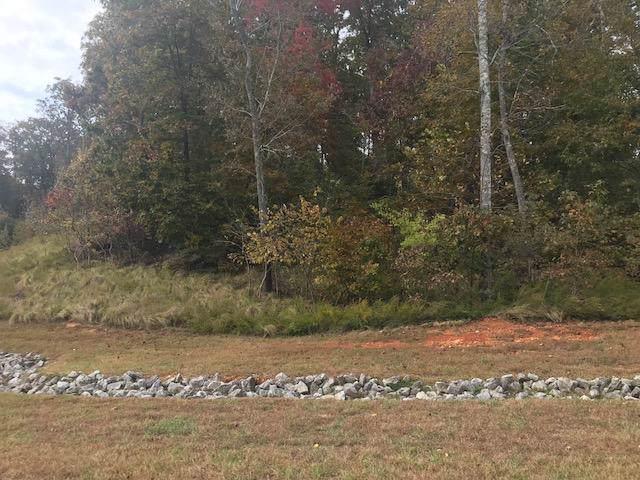 E Shore Lot 135 Drive, Rockwood, TN 37854 (#1098078) :: The Creel Group   Keller Williams Realty